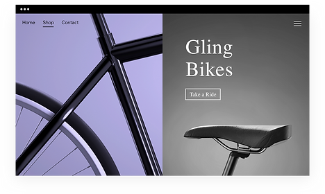 New bicycle website