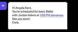 Obrazek strony internetowej Ballet School z narzędziem do zarządzania klientami od Wix Bookings