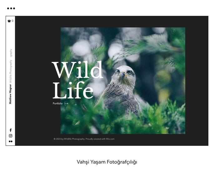 Vahşi Yaşam Fotoğrafçılığı