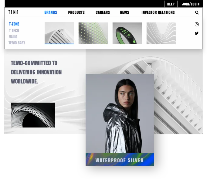 Homepage of an enterprise website. Company name: TEMO. Homepage shows 3 sub-brands of the company, plus many business and site assets, including a fitness app, a fashion summit and an investor relations segment.