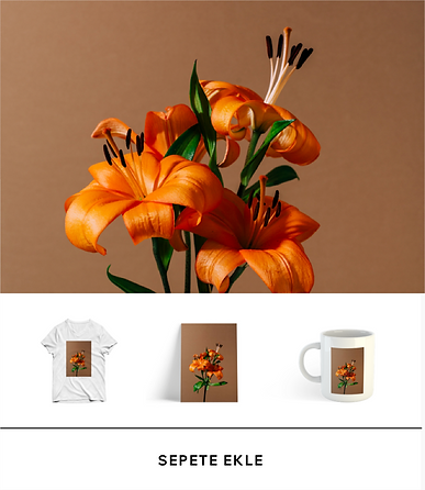 Tişört, kupa ve baskı dahil markalı ürünler sunan online mağaza.