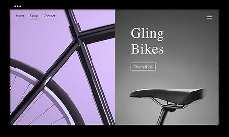 New bicycle website