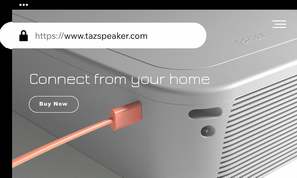 Speaker company's website with custom domain.