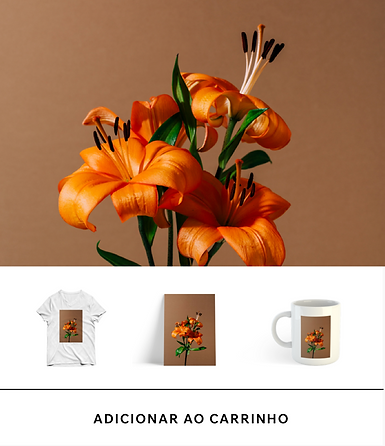 Loja online que oferece produtos de marca, incluindo uma camiseta, uma caneca e uma impressão.