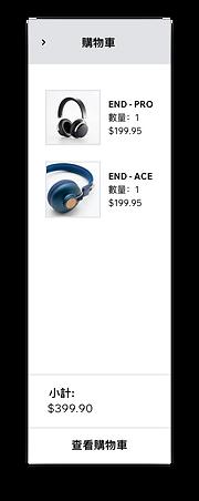 一個Wix商店的購物車頁面所顯示的商品
