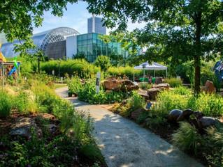 Celebrating OKC's urban garden