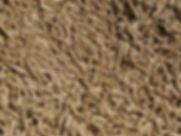 SRC-pellets-closeup1.jpg