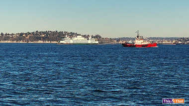 View-from-the-Ferry_2.jpg