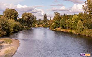 river 1-1.jpg