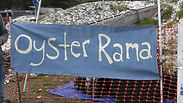 oyster rama banner.jpg