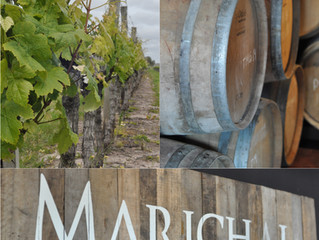 Rolou no fim de semana... Visita Bodega Marichal!