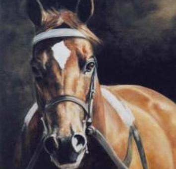 Wando ~ 2003 Canadian Triple Crown Winner