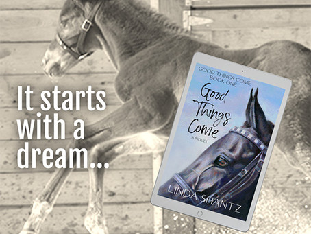 Where to get the Good Things Come audiobook