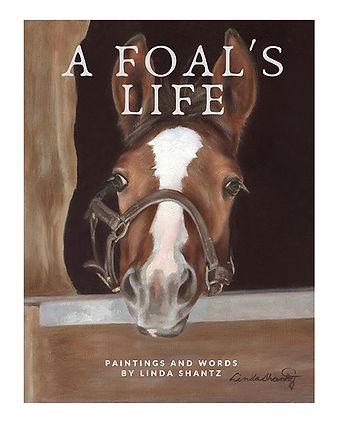 A Foal's Life-1.jpg