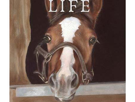 """A Foal's Life"" – My New e-Book!"