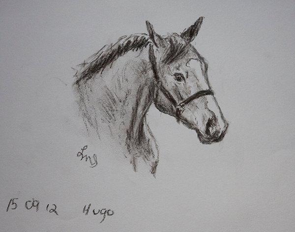 Hugo 2 Left-handed Sketch