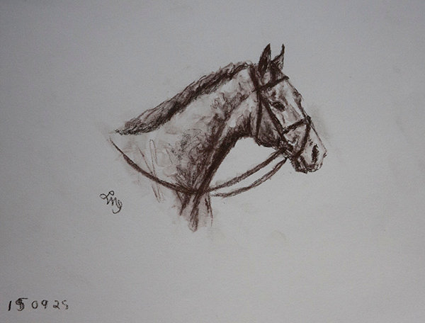 Grey Racehorse Left-handed Sketch