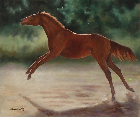 """""""Soar,"""" original oil on canvas"""