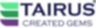 new Logo Mar-19 trans bg.png
