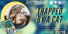 TrappedByACat.png