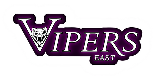 """6"""" Vipers East Window Cling - (Personalization Optional)"""