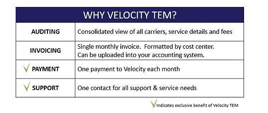Why Velocity Team?