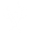 award_icon-10.png