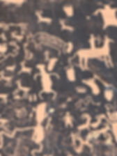 Petroglyph panel.JPG