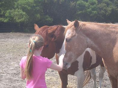 Girl and horses.jpg