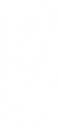 Logo_SF_Wit.png