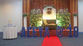 Aleya_1 (3).jpg
