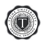 Trine Logo Grey.png
