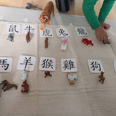 [Animals and Flashcards] Zoo