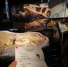 [Museum] Scavenger hunt
