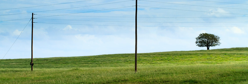Old telegraph lines and green pastures