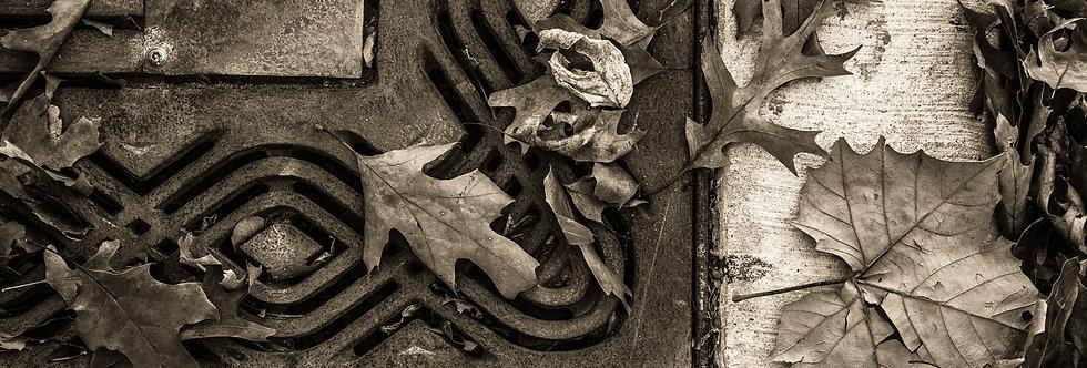 Leaves on rusted metal grate