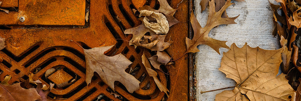 Iron grate covered with fallen leaves, late fall