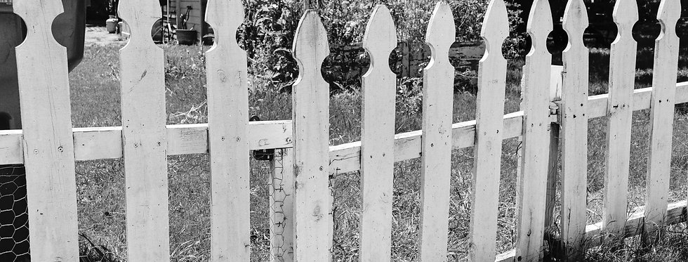 White picket fence and early morning sun
