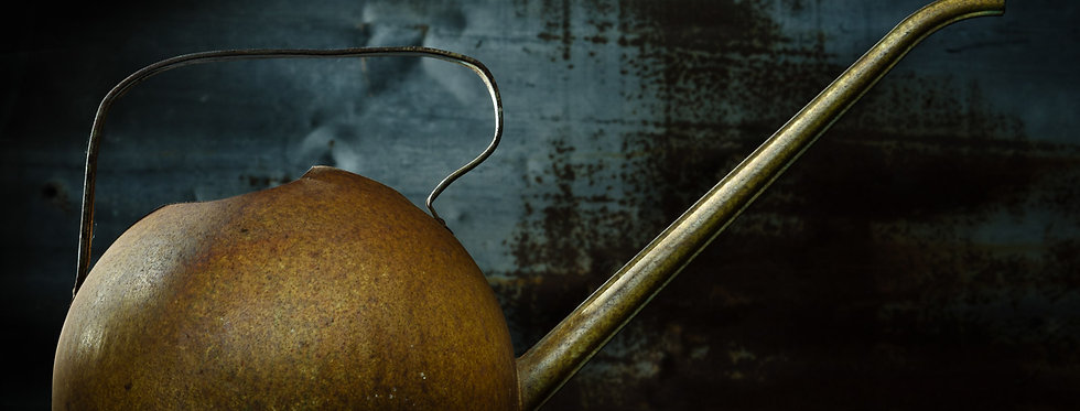 Still Life Photography  Vintage watering can