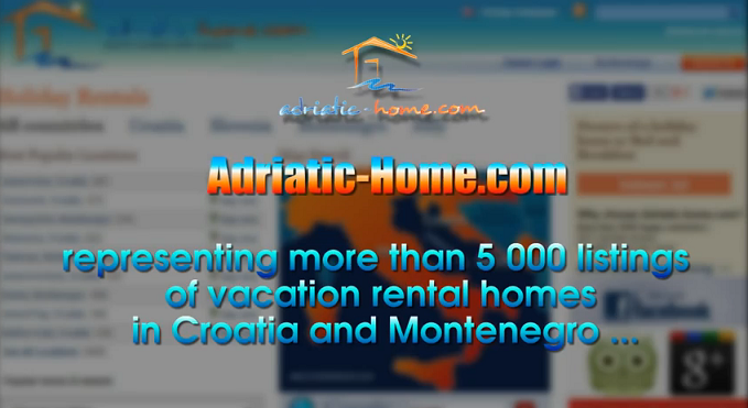 Video promotion of the website