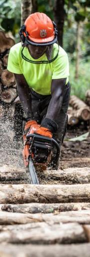 Plantation maintenance & harvesting