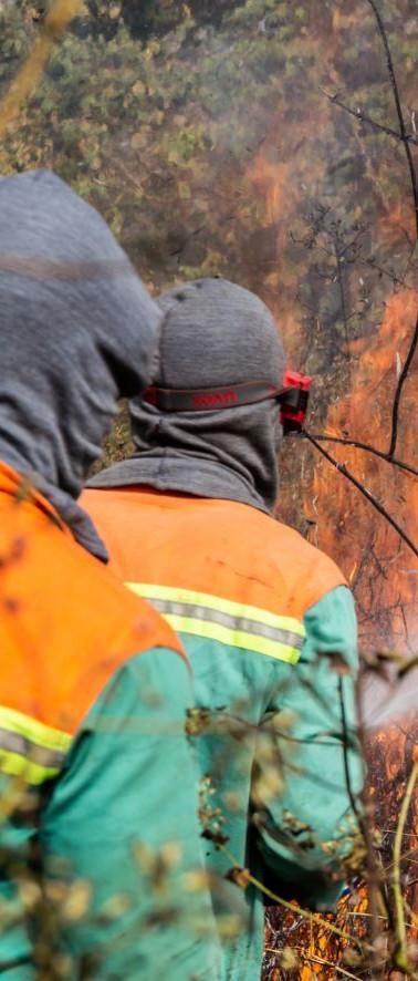 Company Fire Management