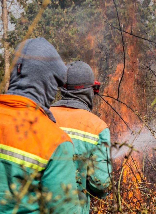 Life fire fighting simulation
