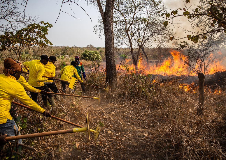 Life fire fighting simulation training