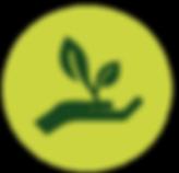 S&E icon_green.png