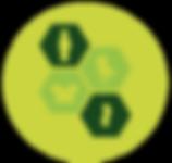 biodiversity icon_green.png