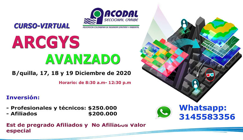 PORTADA Virtual Arcgys 2020.jpg