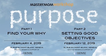 MM workshop Feb 2019.png