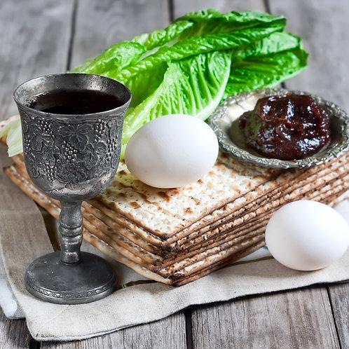 Pesach Seder Sing-a-long Bootcamp