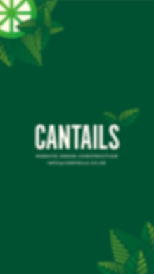 Cantails_Holding Page-02.jpg